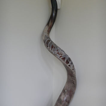 African Hand Carved Animal Horn
