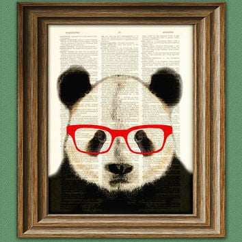 Panda Smarty Pants Panda Bear  with red glasses by collageOrama