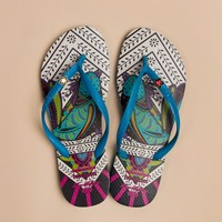 Mara Hoffman Sandal in Turquoise by Havaianas - ShopKitson.com