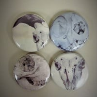 Pinback Button Set of 3 or 4 Original Skull Drawing