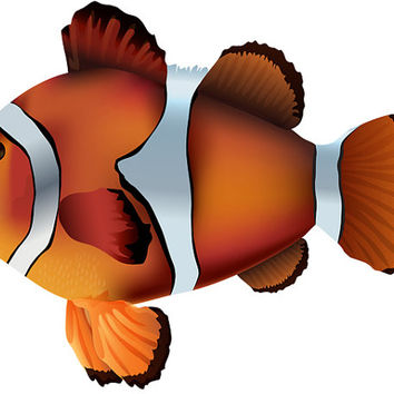 Water Baby Image, Clownfish Cutout, Clownfish Image,Fish Image,Fish Template,Large Poster,Wall Décor, Kids Room, Nursery Room, Nursery Décor