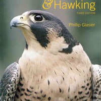 Falconry and Hawking by Phillip Glasier (Hardback)