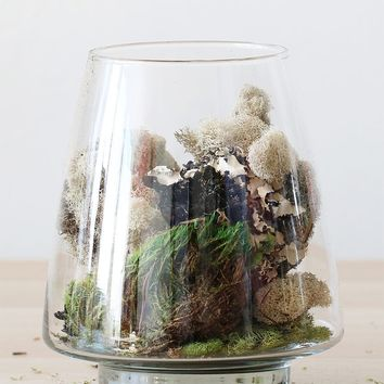 "Glass Geometric Pyramid Terrarium Vase - 7.5"" Tall x 6.25"" Wide"