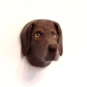 Dog portrait / wall mount, art scullpture, faux taxidermy