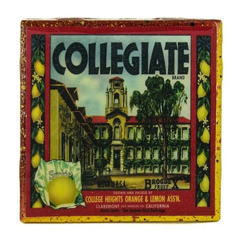 Collegiate Brand - Vintage Citrus Crate Label - Handmade Recycled Tile Coaster