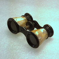 Vintage Opera Glasses,  Mother-of-Pearl Theater Glasses, Home or Office Decor, Steampunk, Shabby Chic, French, Cottage Decor