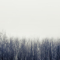 Minimalist Gray Winter Photograph- white blue wall decor, trees, snow, fog, holiday, room decorating