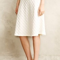 Dotted Jacquard Skirt