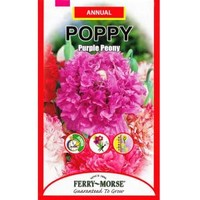 Ferry-Morse, Poppy Purple Peony Seed, 1962 at The Home Depot - Mobile