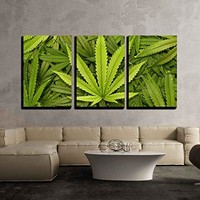 "wall26 - 3 Piece Canvas Wall Art - Big Marijuana Leaf Close Up with Texture Background of Cannabis Leaves - Modern Home Decor Stretched and Framed Ready to Hang - 16""x24""x3 Panels"