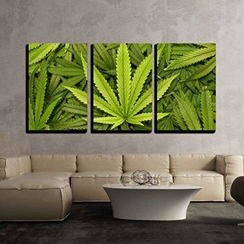 """wall26 - 3 Piece Canvas Wall Art - Big Marijuana Leaf Close Up with Texture Background of Cannabis Leaves - Modern Home Decor Stretched and Framed Ready to Hang - 16""""x24""""x3 Panels"""