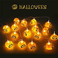 2.5M LED String Light Halloween Decor 16 Heads Pumpkin Skull Light Strip Waterproof Outdoor Lanterns with Plug or Battery Case