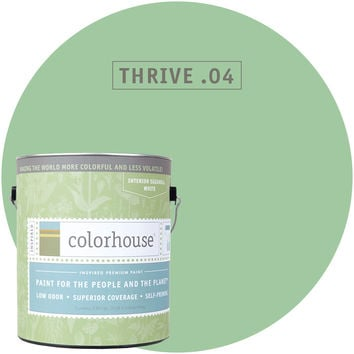 Paint by Colorhouse THRIVE .04