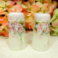 Austrian Porcelain Salt & Pepper Shakers Hand Painted Artist Signed Pink Flowers