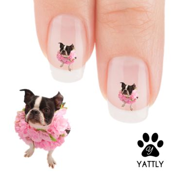 "Boston Terrier ""Floral Beauty"" Nail Art Decals ( NOW 50% MORE FREE)"