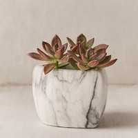 Mini Marbled Heart Planter | Urban Outfitters