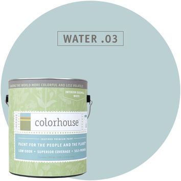 Paint by Colorhouse WATER .03