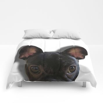 French Bulldog Peekaboo Comforters by UMe Images