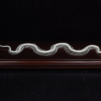 Real snake skeleton, snake,with base and case,birthday gift,christmas gift