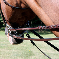 Heritage Fancy Stitch Reins - 4132005