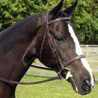 Red Barn Sovereign Hunter Bridle with Cavesson Noseband