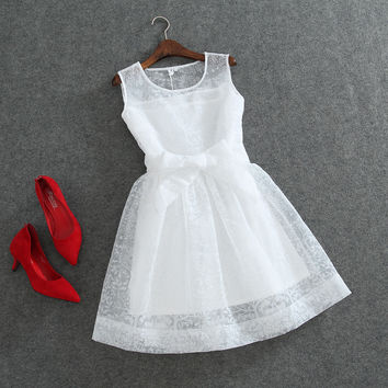 A-Line Mesh and Lace Skater Dress with Ribbon Lace Belt