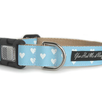 Be My Valentine Dog Collar - Light Blue