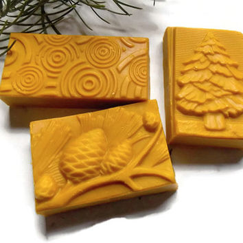 3 Organic Hemp Shampoo Bars / Natural Eco Friendly Vegan Soap