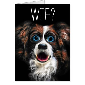 WTF? Belated Birthday with Funny Border Collie Dog Card