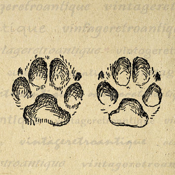 Paw Prints Digital Image Printable Dog Paw Graphic Illustration Download for Transfers Tote Bags Tea Towels etc HQ 300dpi No.984