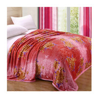 Two-side Blanket Bedding Throw Coral fleece Super Soft Warm Value 180cm 08