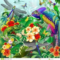 Chameleons Hunting, Dragonflies, Butterflies, Ladybugs Stock Image - Image of green, dragonfly: 100527827