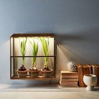 Brass Grow-Anywhere Growhouse