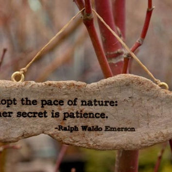 Ralph Waldo Emerson - Adopt natures pace