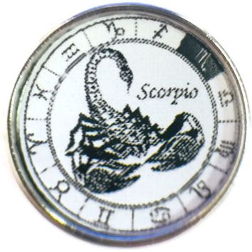 Scorpio Scorpion In Zodiac Sign Horoscope Symbol 18MM - 20MM Charm for Snap Jewelry New Item