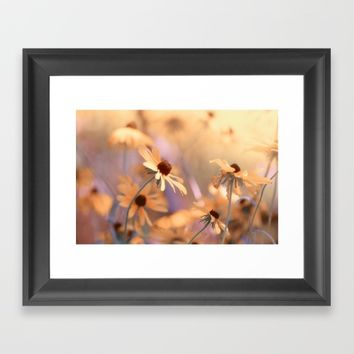 Suns star in the autumn garden Framed Art Print by Tanja Riedel