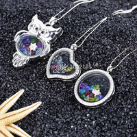 Crystal Memory Locket Necklace- Heaet, Owl, Round Styles