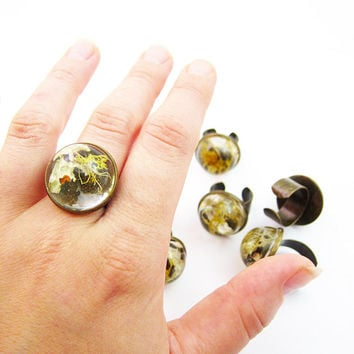 Antique Brass Adjustable Terrarium Dome Ring • Size 5-15 • Botanical Jewelry • Science Jewelry • Resin Ring • Resin Moss Jewelry
