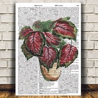Plant print House plant poster Watercolor decor Flower print RTA1637