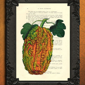 Pumpkin illustration, Fall, autumn art print