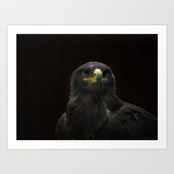 Steppe Eagle Art Print by Mixed Imagery