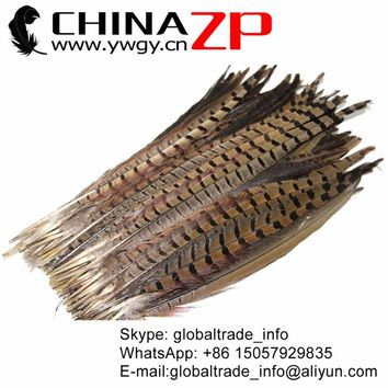 CHINAZP Factory 100pcs/lot Size 30-35cm(12-14inch) Natural Ringneck Pheasant Tail Feathers for Party Decorations