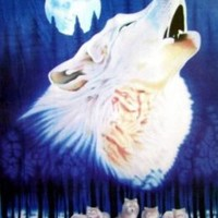Wolf Polar Fleece Throw Blanket 50x60
