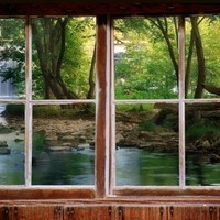 Wall decal woods and waterfall  window viewlarge by CatsMeowArt