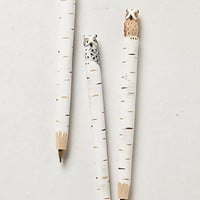 Hand-Carved Owl Pen