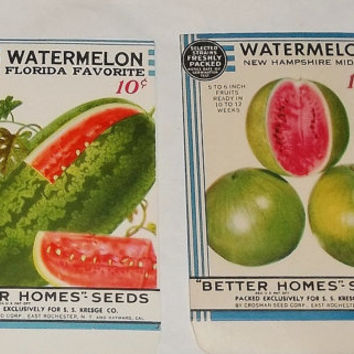 Vintage Watermelon Seed Packages, c1934 Rochester NY