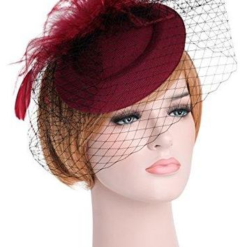 Zivyes Womens Fascinator Hat with Veil Pillbox Hat Bowler Feather Flower Hair Clip Wedding Party Hat