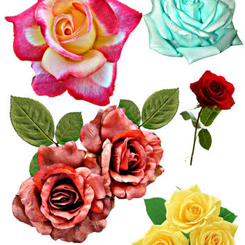 real flower roses die cuts clip art digital image download graphics printable clipart red blue yellow