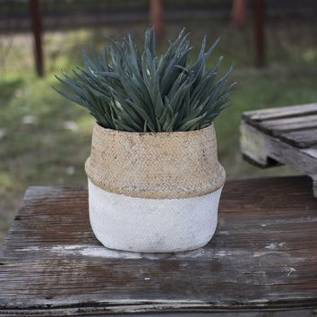 Woven Cement Planter ~ Natural and White
