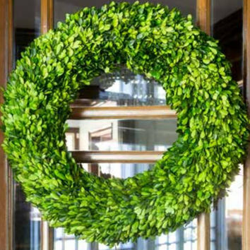 Large Preserved Boxwood Wreath - 24""